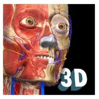 App Anatomy 3D