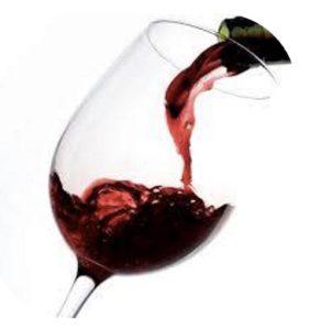 El Mundo de los Vinos