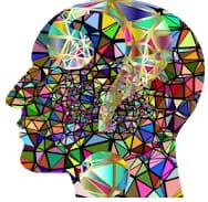 Entrenador de cerebro